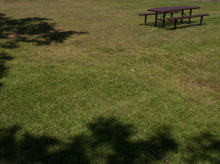 Solitary bench with encroaching shadows.
