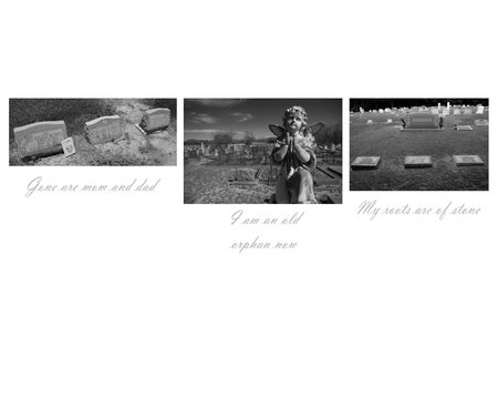 Haiku-triptych combination revealing some stories and emotions from cemeteries.
