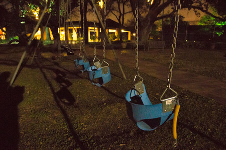 February 12, 2015:  Swings bring back childhood memories, teen memories and fatherhood memories.  These, lonely and unused at night, still call out for companionship and remind me of great times.  More to come.  Still....life.