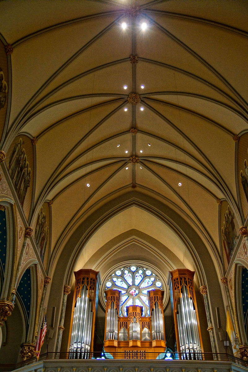 "August 5, 2015:  I believe God surrounds us, but that doesn't mean I don't also like to go into a centuries old church to get that feeling that ""God lives and listens here.""  So it is at the Cathedral of St. John the Baptist in Savannah, GA.  Go...and be heard.  And listen.  Still...life."