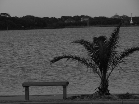 Bench awaiting a guest at Clear Lake in Texas.