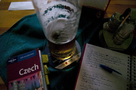 Czech dictionary, beer and journal