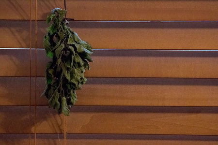January 7, 2015:  Stop. Pause.  Look again at the textures of the lemon balm leaves hanging to dry to some day make tea or other purpose.   Texture, color, beauty.  Aging, changing...new purpose. Still...life.
