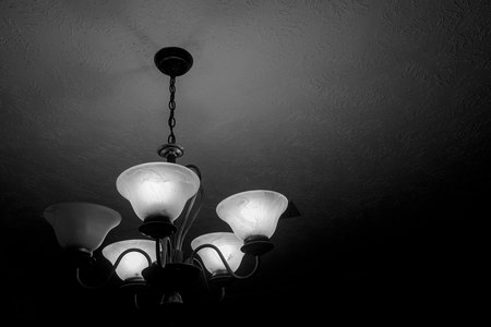 March 9, 2015:  When I first got a good SLR camera in high school, I would look to the ceiling to see...to focus...to compose.  I wanted to see more than I had the money to finance film for.  I continue to look at ceilings to see what new there is to see.  Still...life.