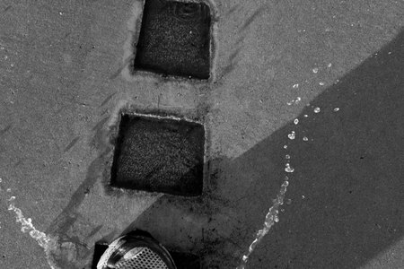"March 31, 2015:  As a kid, I loved splashing in puddles and in the ""gutter"" (which is what we called the place where water collected along the curb).  As a much-older-than-kid, I still like to make a splash.  Still...life."