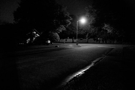 April 12, 2015:  Night's quiet, mystery and aloneness provides a great time to pause, reflect, think.  Just take the moment.  Still...life.