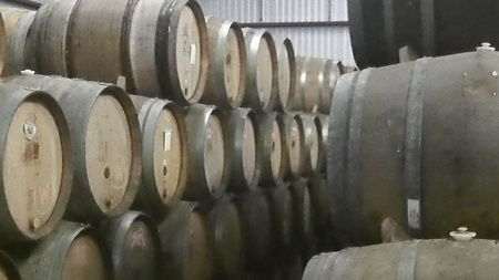 August 29, 2015:  Sitting in a 65-degree room with barrels full of craft beer for my middle son's birthday fun.  As fun as the get together was, it has been more fun to watch my sons, and now the grandgirls, grow.  Still...life.