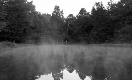 October 3, 2015:  The morning fog moves across the water as the new day begins and temperatures change.  My place away from places brings me calm and reminders of how beautiful the world is.  Pause.  Notice.  Create.  Still...life.