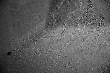 November 25, 2015:  A bit brain dead today.  Staring at the ceiling with a brain full of brain things.  A pause to appreciate light, shadow and texture...a photographer's tool chest.  Still...life.