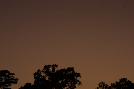 October 2   The smooth continuity of color of a dusk sky, an extensive seamless background.